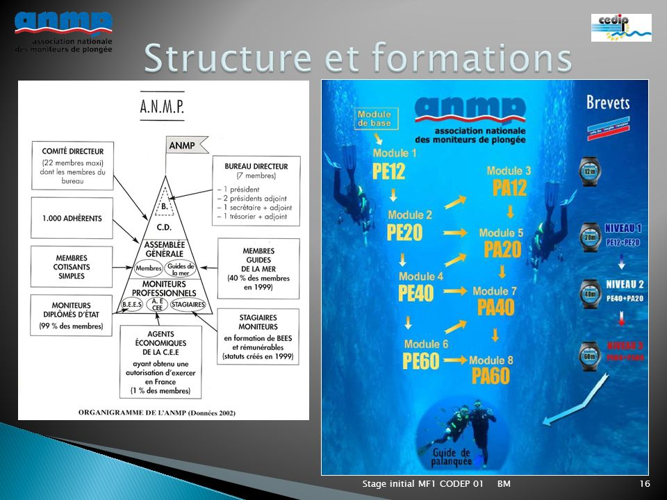 Structure et formations
