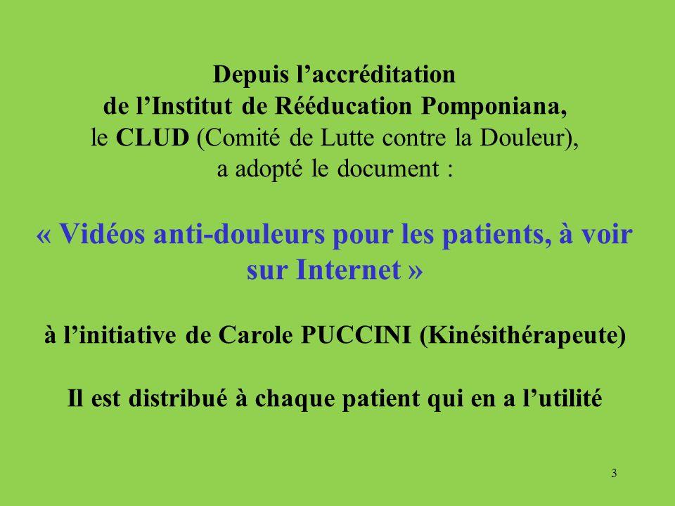 Depuis l'accréditation de l'Institut de Rééducation Pomponiana, le CLUD (Comité de Lutte contre la Douleur), a adopté le document : « Vidéos anti-douleurs pour les patients, à voir sur Internet » à l'initiative de Carole PUCCINI (Kinésithérapeute) Il est distribué à chaque patient qui en a l'utilité
