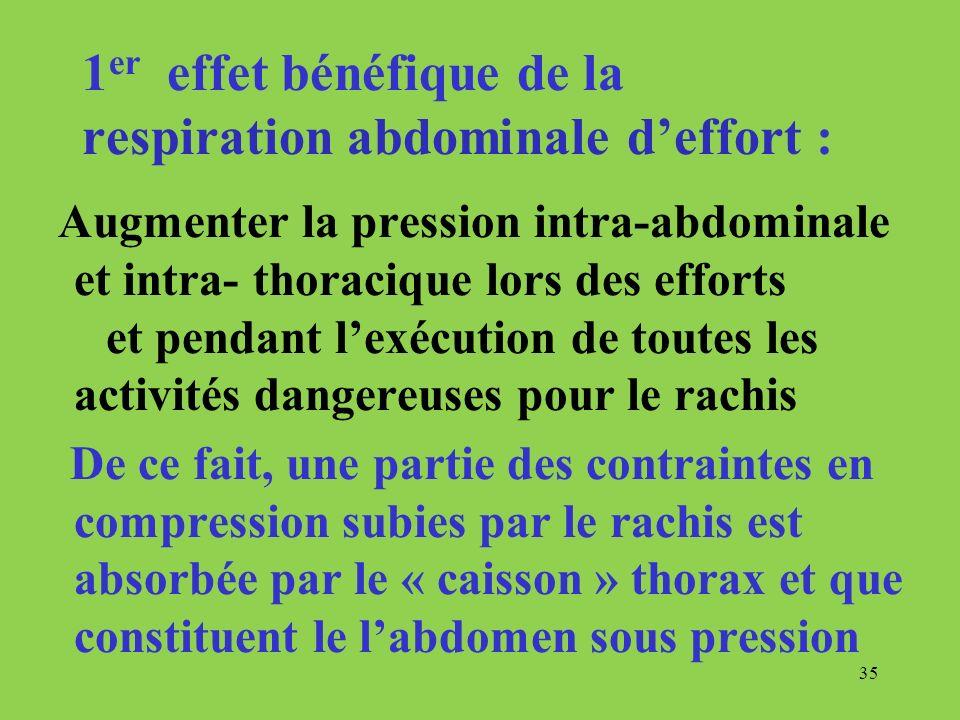 1er effet bénéfique de la respiration abdominale d'effort :