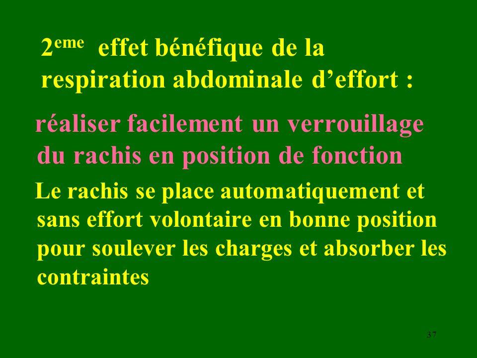 2eme effet bénéfique de la respiration abdominale d'effort :