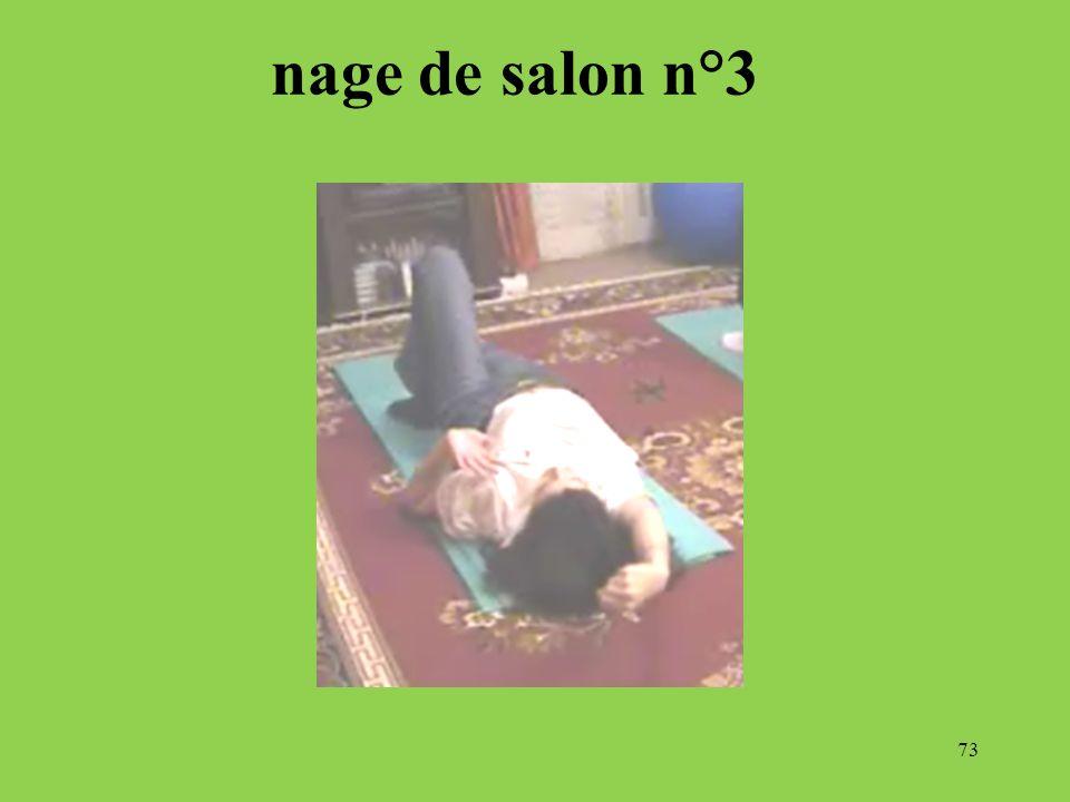 nage de salon n°3