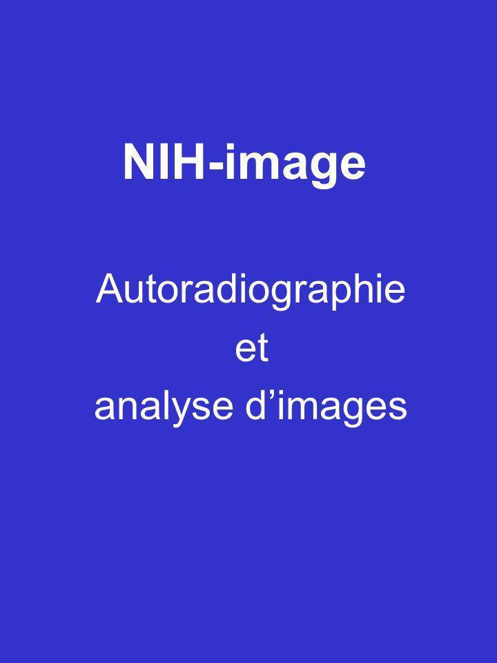 Autoradiographie et analyse d'images