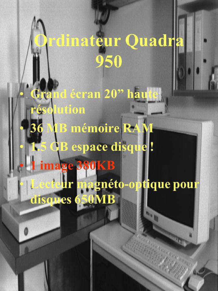 Ordinateur Quadra 950 Grand écran 20 haute résolution