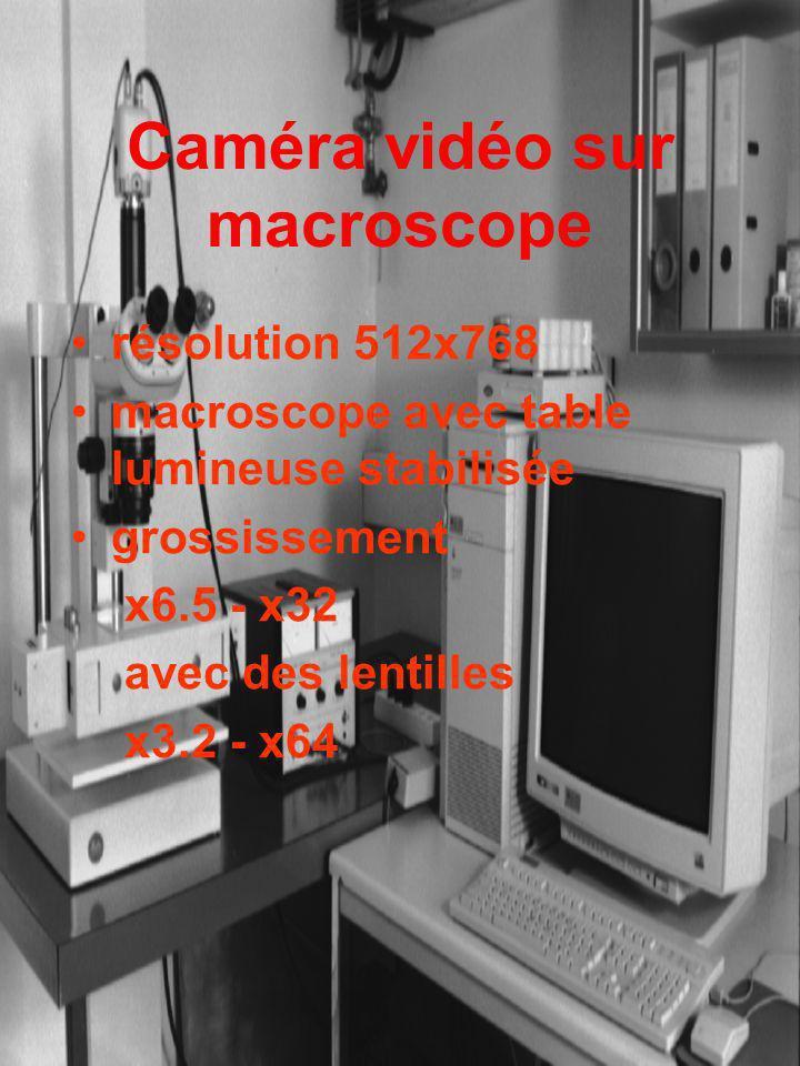 Caméra vidéo sur macroscope
