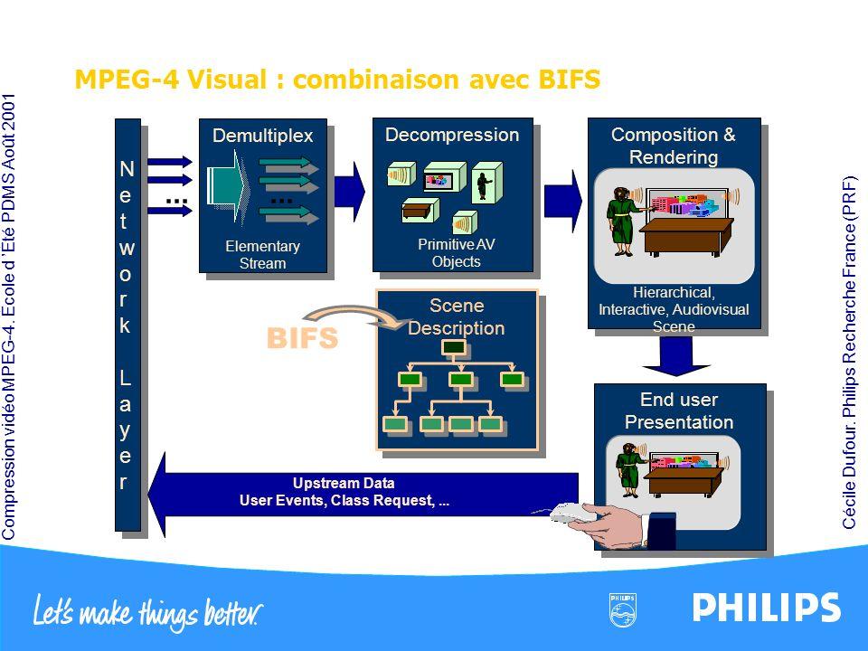 MPEG-4 Visual : combinaison avec BIFS