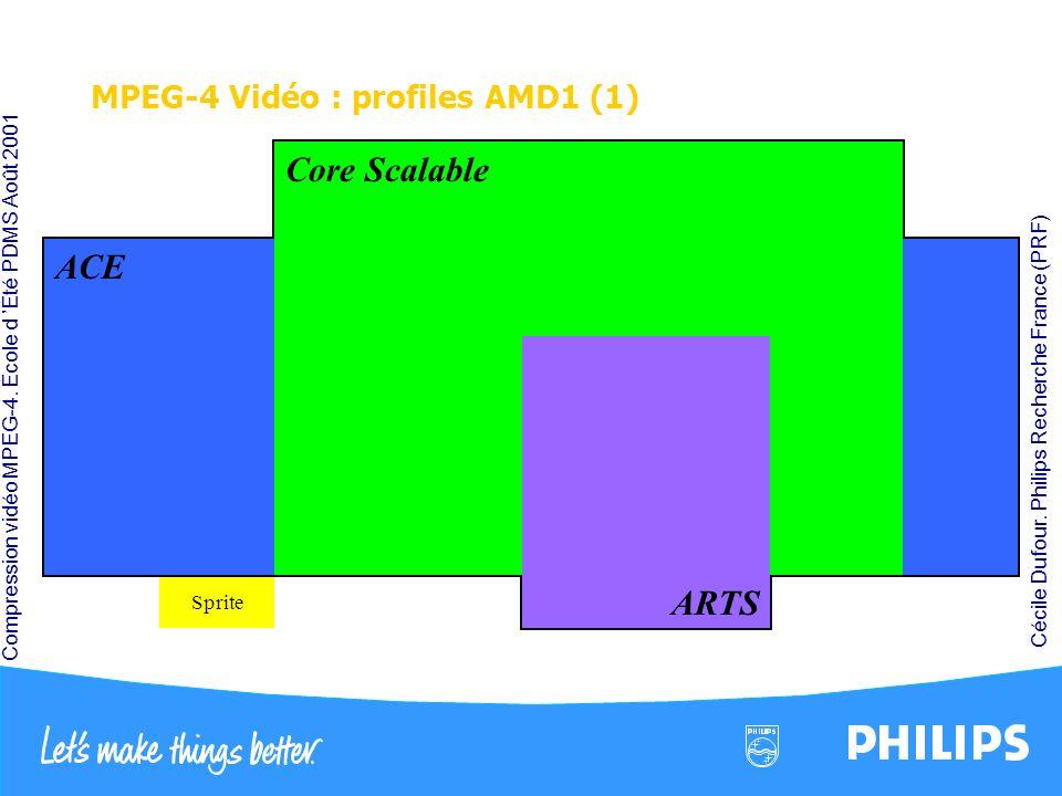 MPEG-4 Vidéo : profiles AMD1 (1)