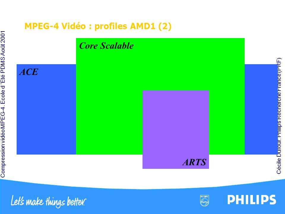 MPEG-4 Vidéo : profiles AMD1 (2)
