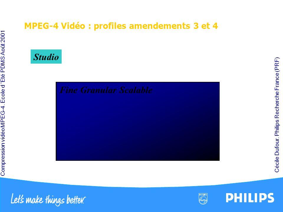 MPEG-4 Vidéo : profiles amendements 3 et 4