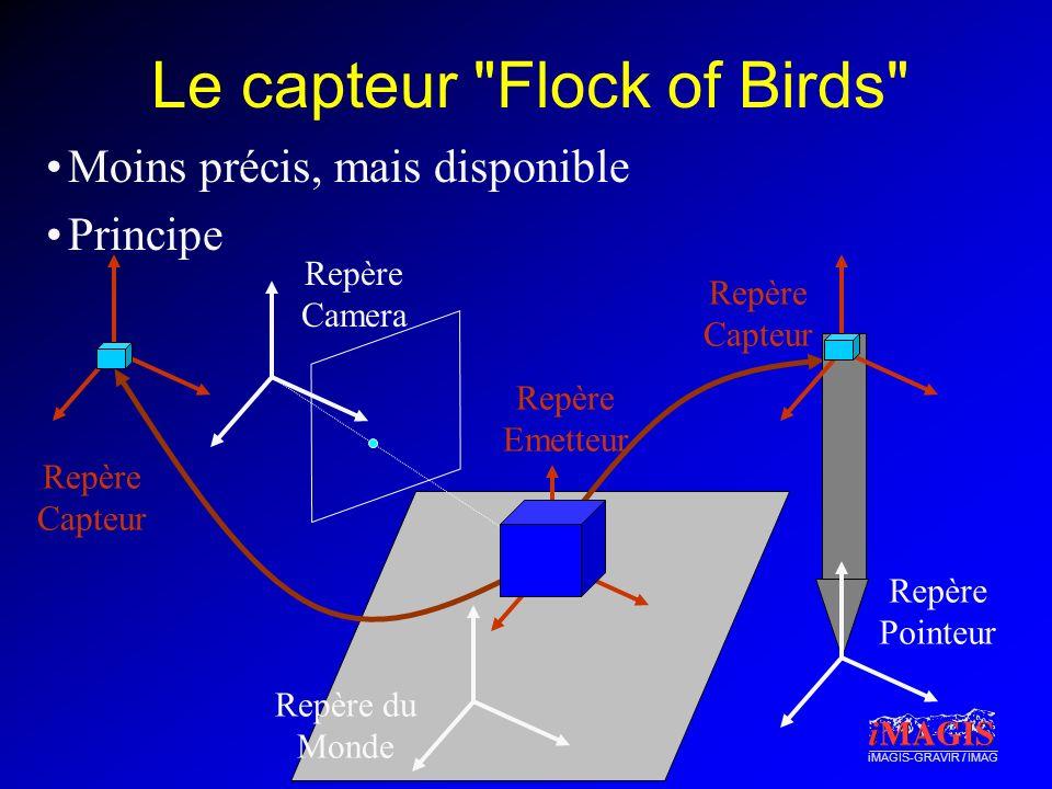 Le capteur Flock of Birds