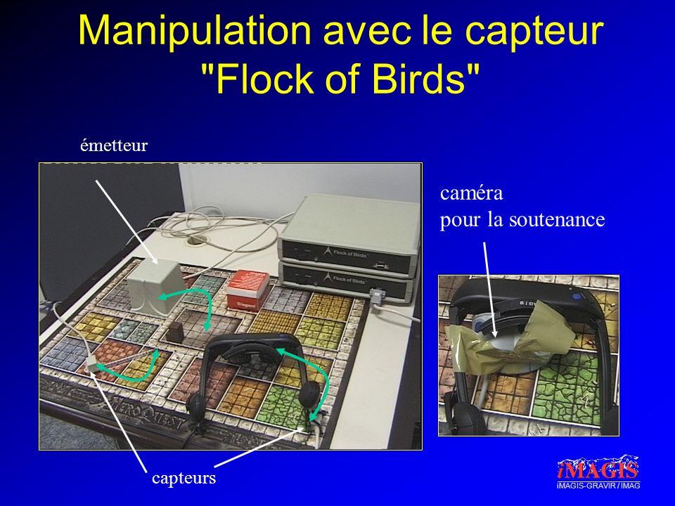 Manipulation avec le capteur Flock of Birds