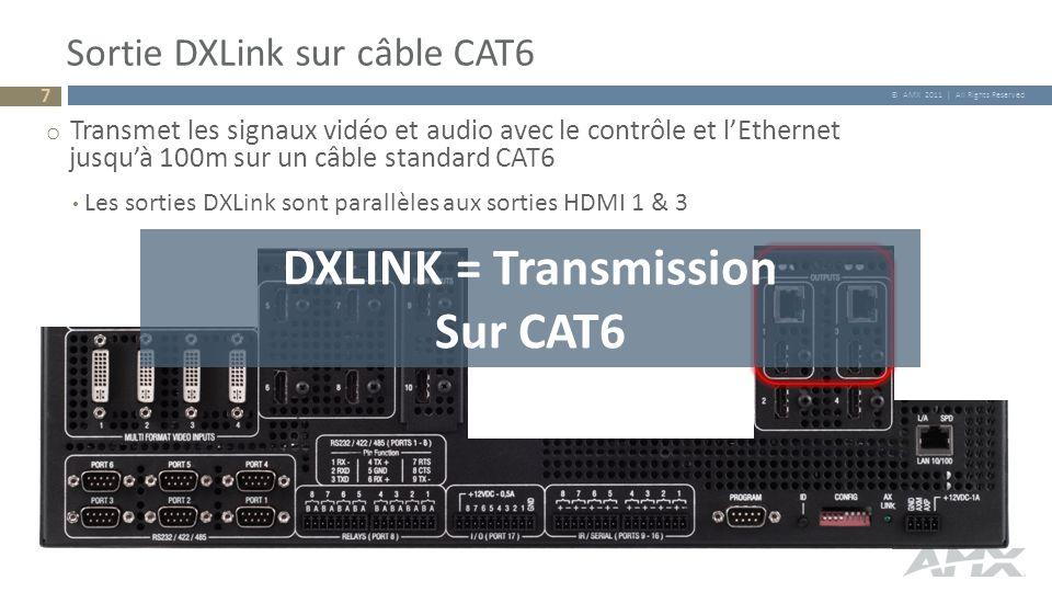 Sortie DXLink sur câble CAT6