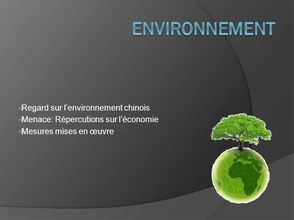 Environnement Regard sur l'environnement chinois