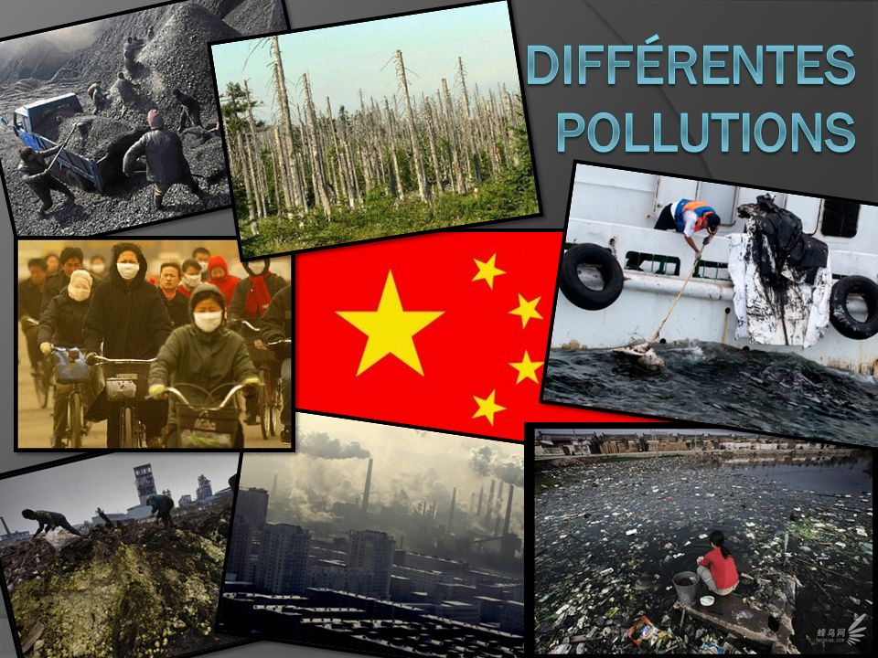 Différentes Pollutions
