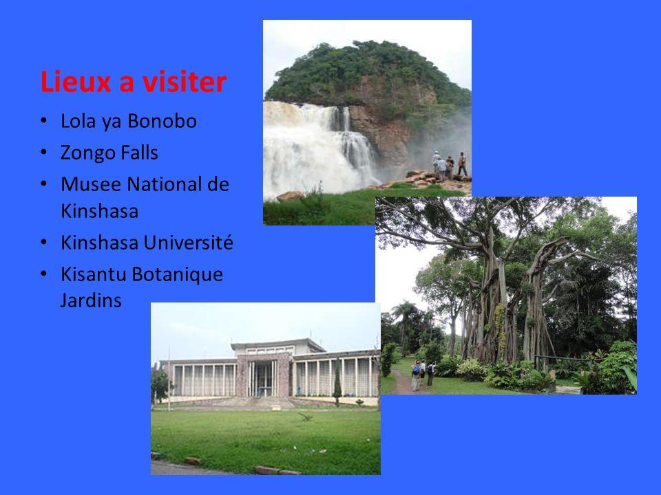 Lieux a visiter Lola ya Bonobo Zongo Falls Musee National de Kinshasa