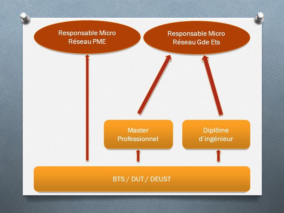 Responsable Micro Réseau PME Responsable Micro Réseau Gde Ets