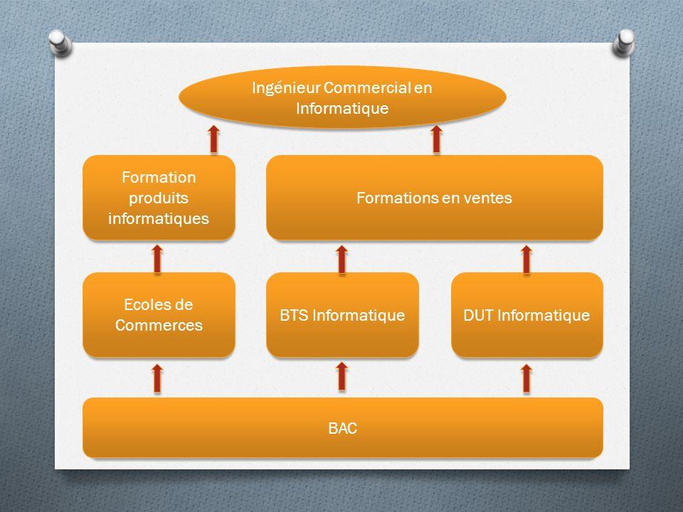 Ingénieur Commercial en Informatique