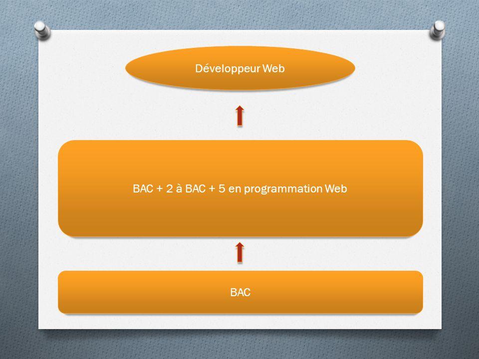 BAC + 2 à BAC + 5 en programmation Web