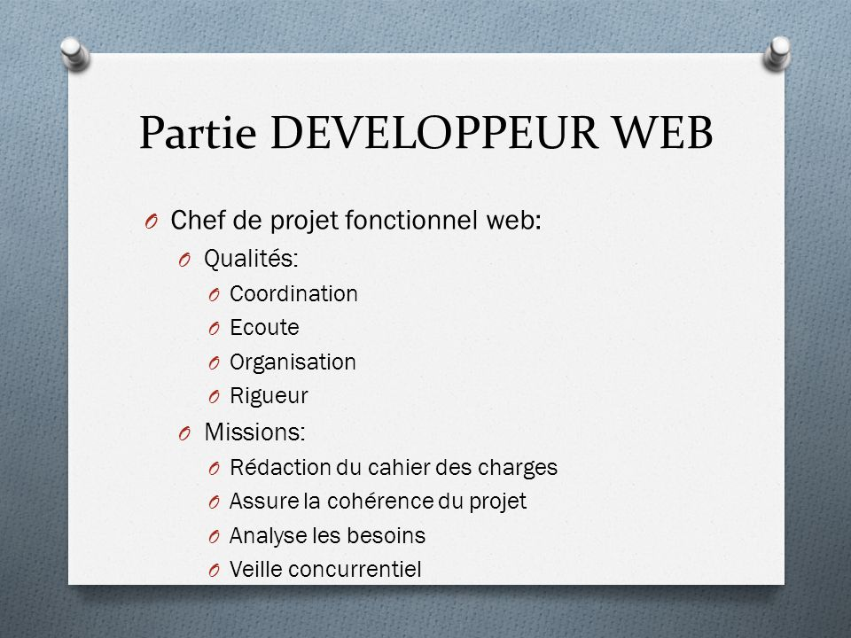 Partie DEVELOPPEUR WEB