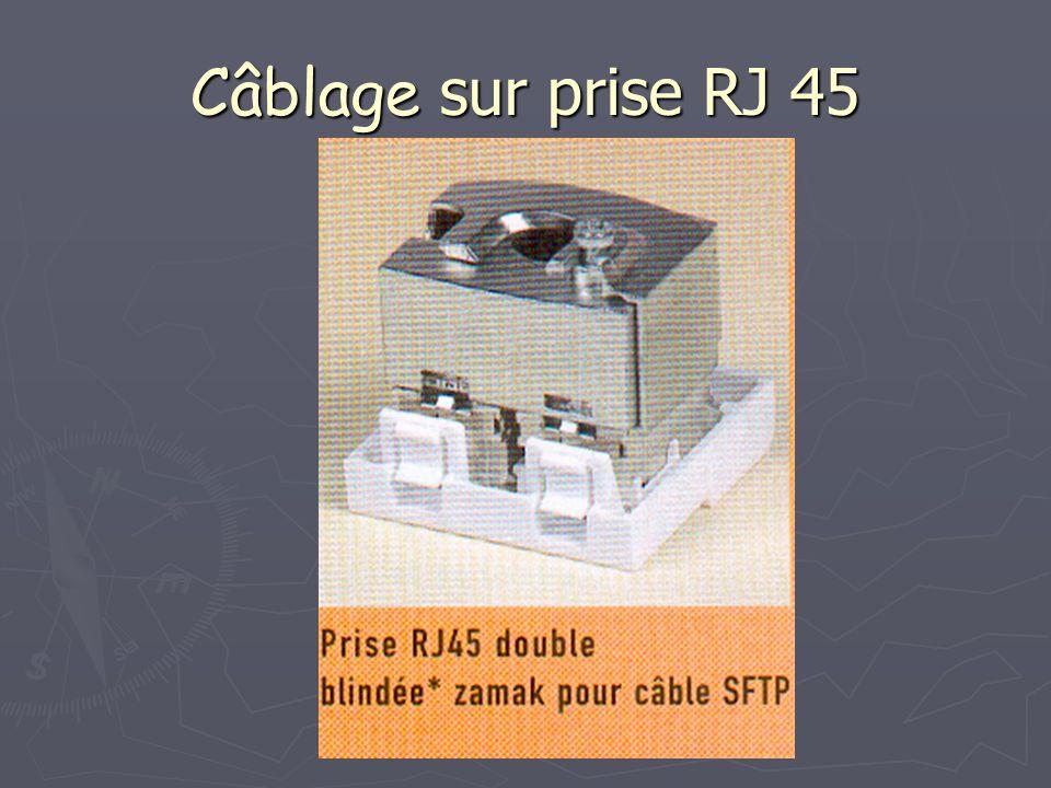 Câblage sur prise RJ 45