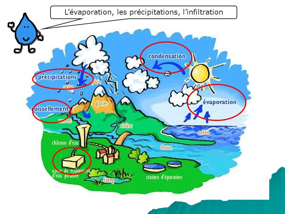 L'évaporation, les précipitations, l'infiltration