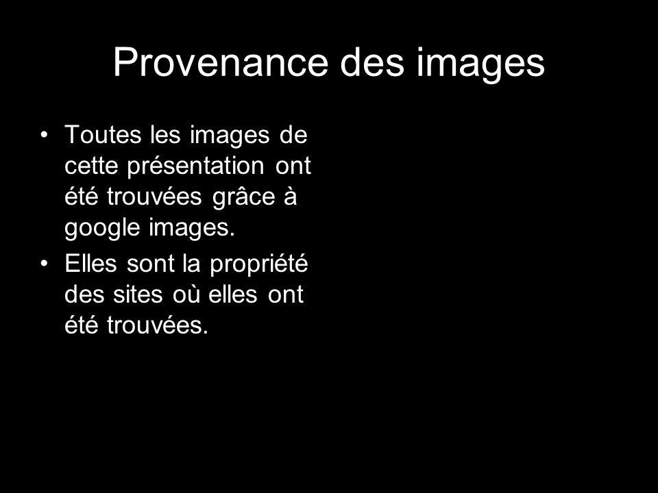 Provenance des images Toutes les images de cette présentation ont été trouvées grâce à google images.