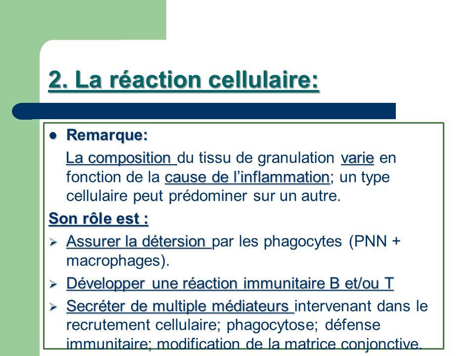 2. La réaction cellulaire: