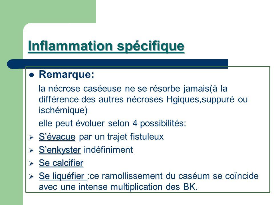 Inflammation spécifique