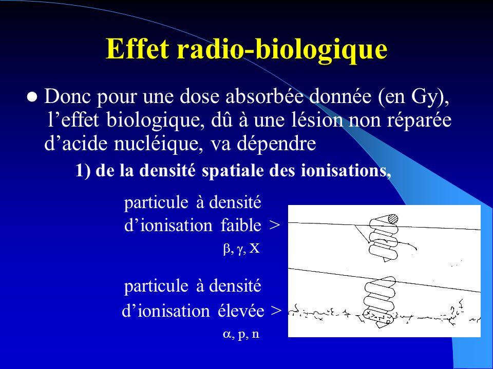 Effet radio-biologique