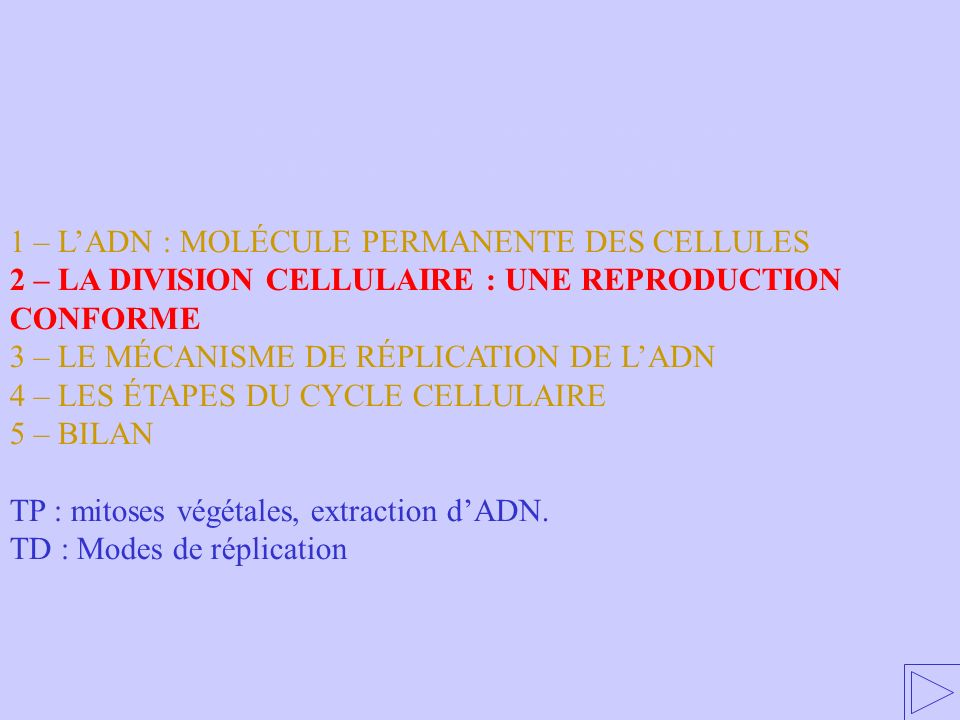 2 – LA DIVISION CELLULAIRE : UNE REPRODUCTION CONFORME