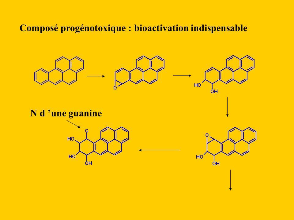 Composé progénotoxique : bioactivation indispensable