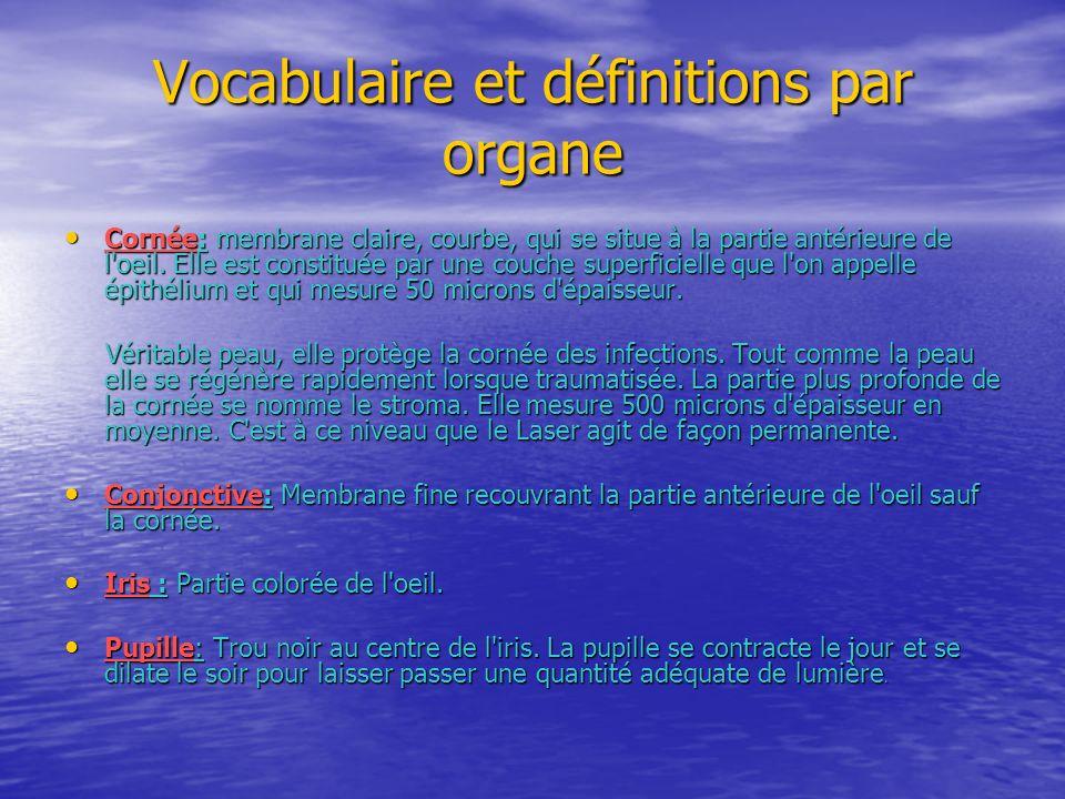Vocabulaire et définitions par organe