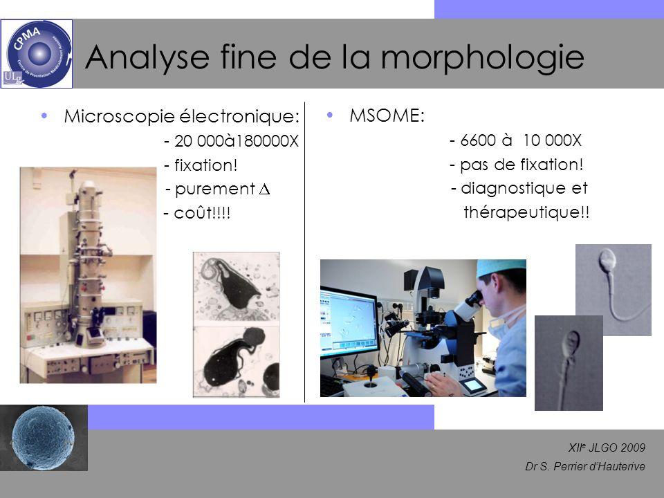 Analyse fine de la morphologie