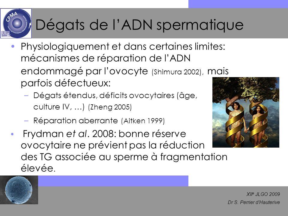 Dégats de l'ADN spermatique