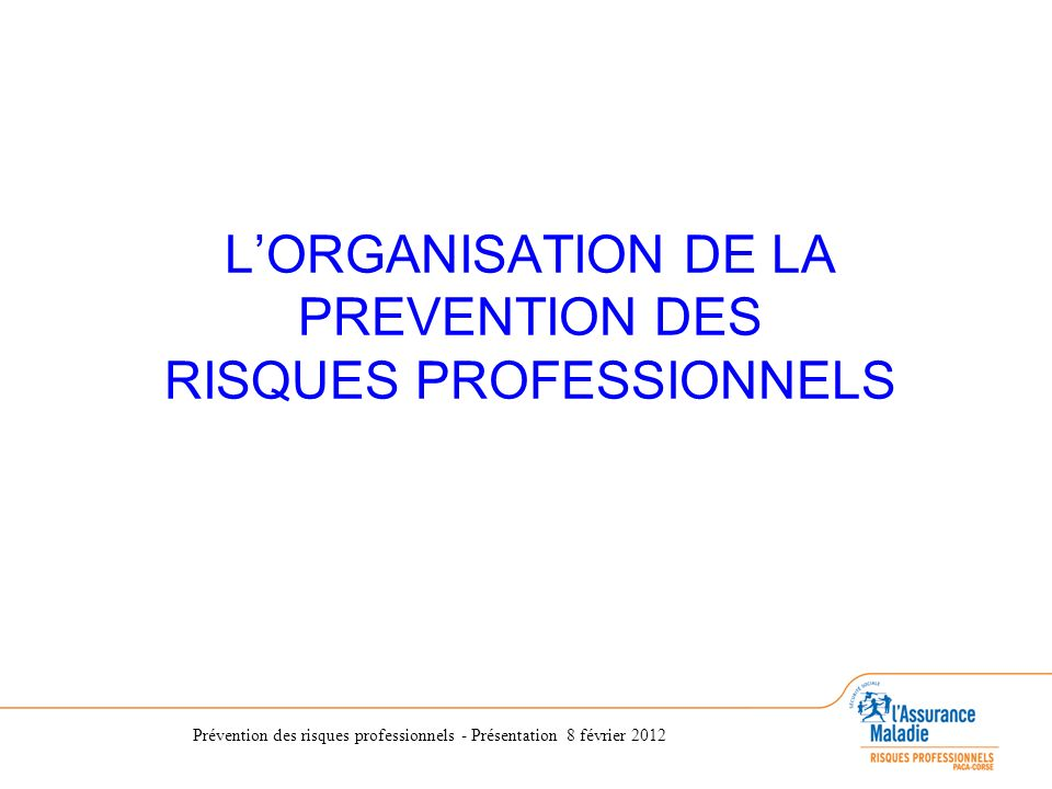 L'ORGANISATION DE LA PREVENTION DES RISQUES PROFESSIONNELS
