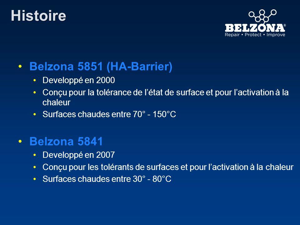 Histoire Belzona 5851 (HA-Barrier) Belzona 5841 Developpé en 2000