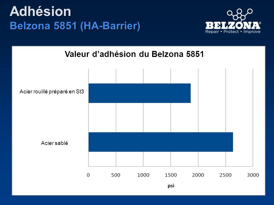 Adhésion Belzona 5851 (HA-Barrier)