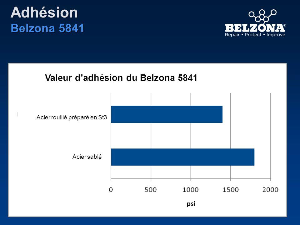 Adhésion Belzona 5841 Valeur d'adhésion du Belzona 5841