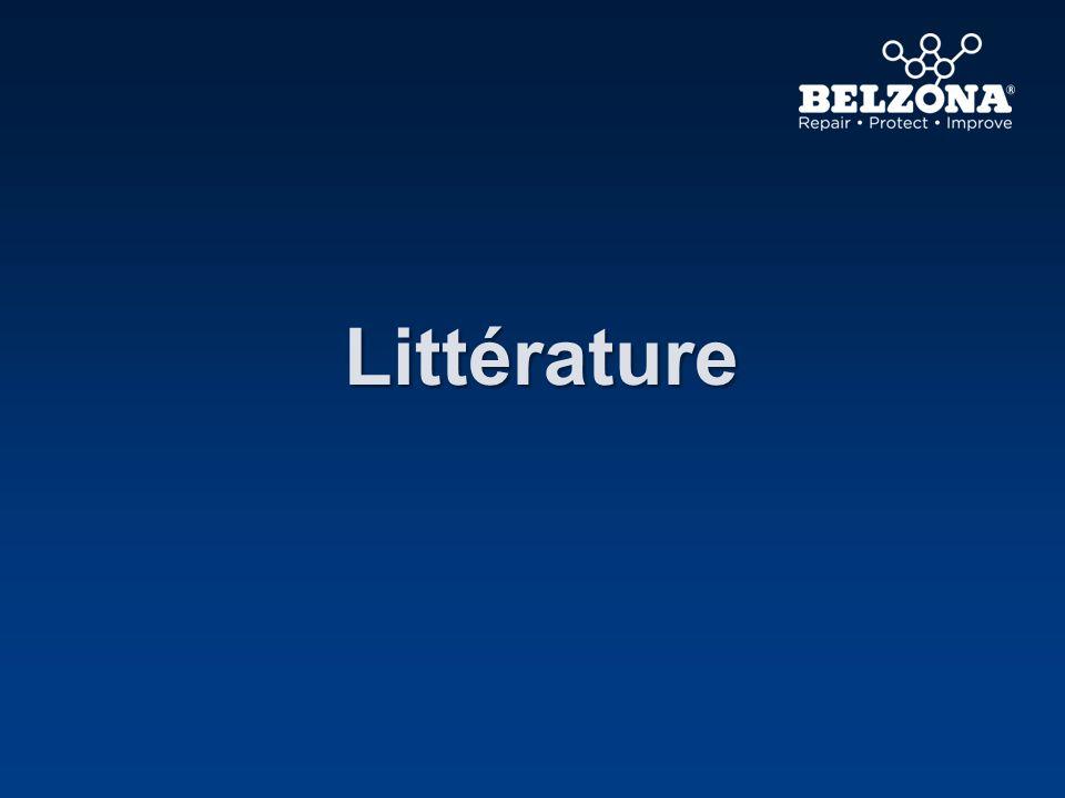 Littérature Regardons maintenant la littérature disponible.