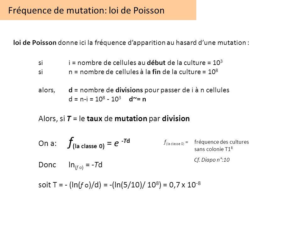 Fréquence de mutation: loi de Poisson
