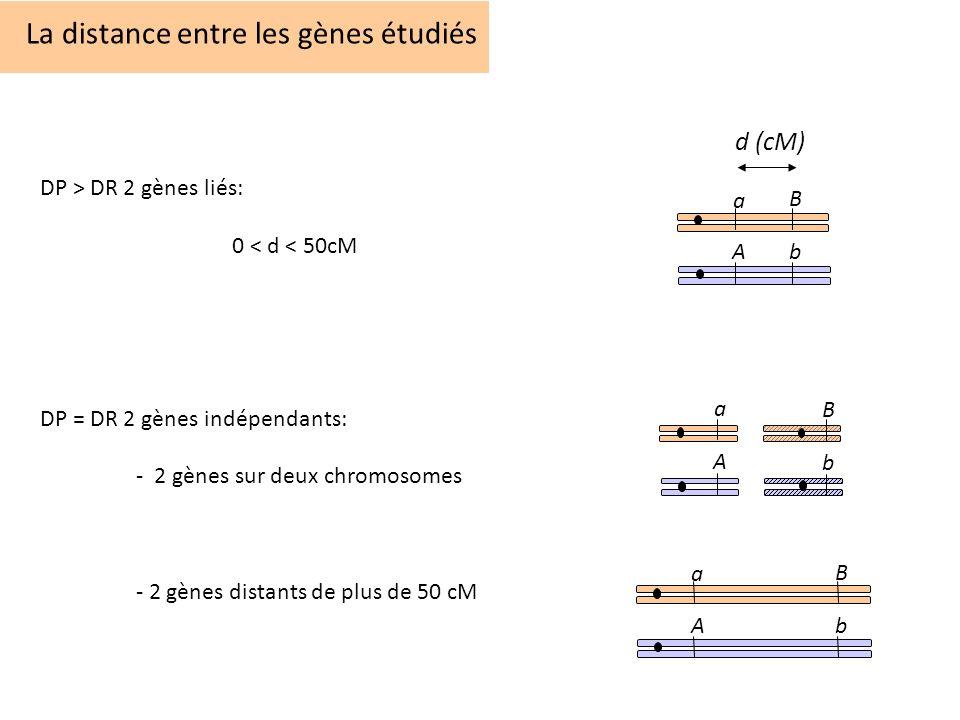 La distance entre les gènes étudiés