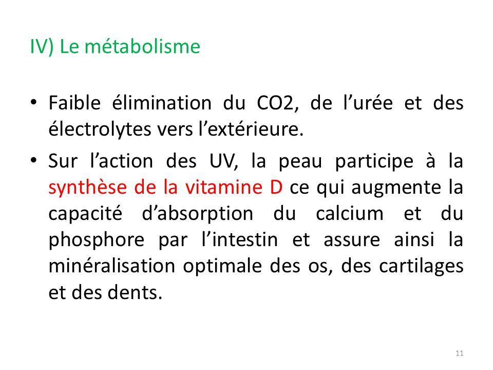IV) Le métabolisme Faible élimination du CO2, de l'urée et des électrolytes vers l'extérieure.