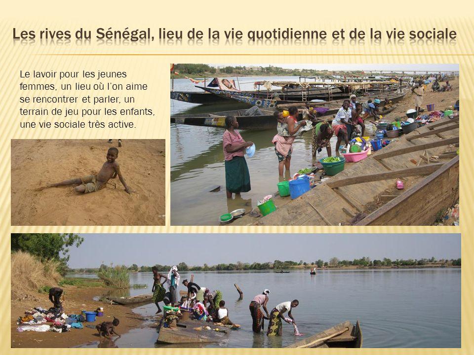 Les rives du Sénégal, lieu de la vie quotidienne et de la vie sociale