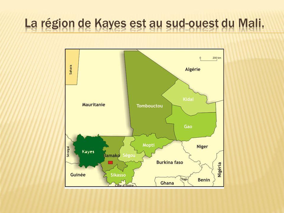 La région de Kayes est au sud-ouest du Mali.