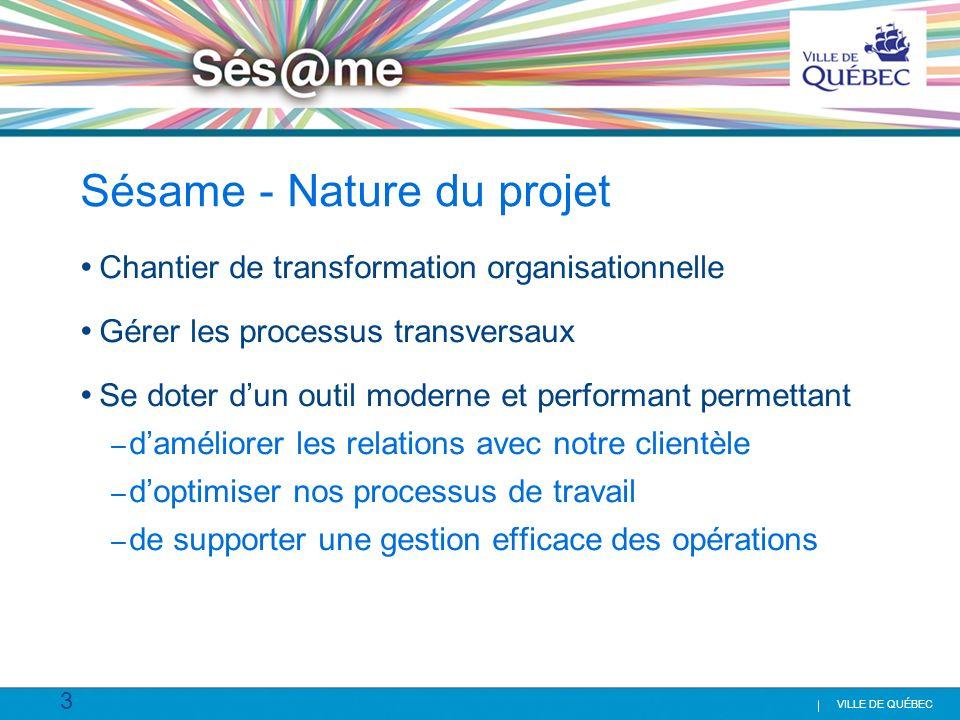 Sésame - Nature du projet