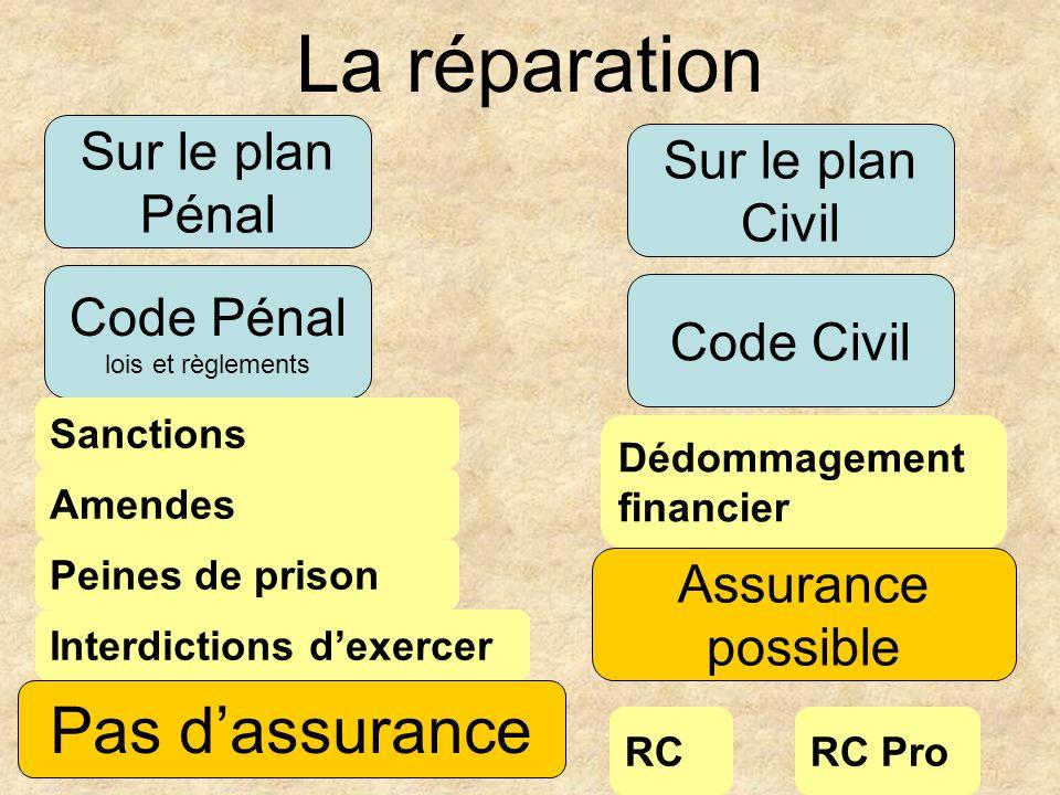 La réparation Pas d'assurance Sur le plan Pénal Sur le plan Civil