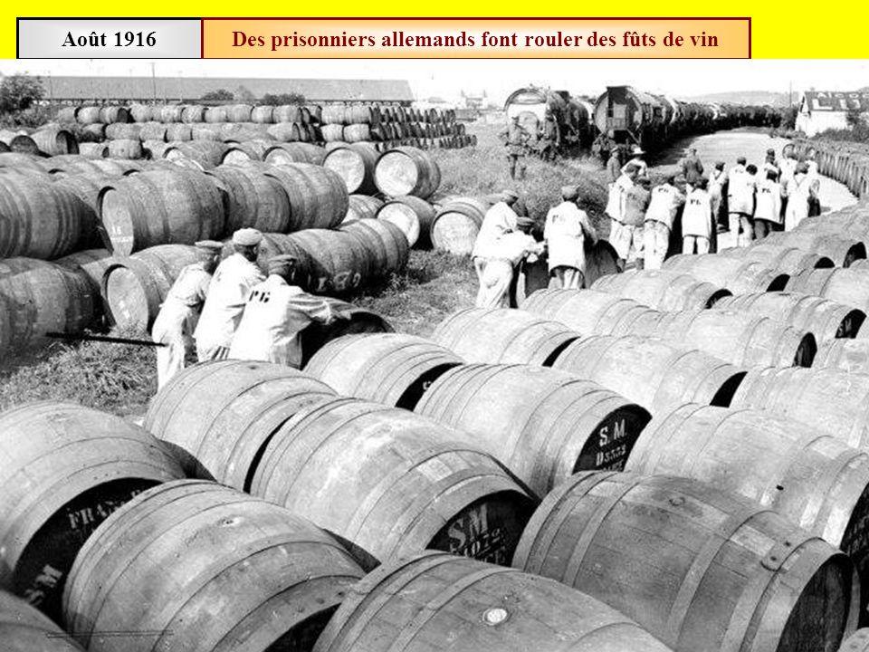 Des prisonniers allemands font rouler des fûts de vin