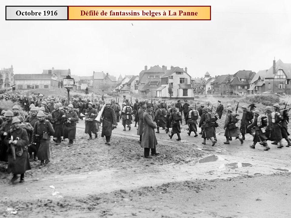 Défilé de fantassins belges à La Panne