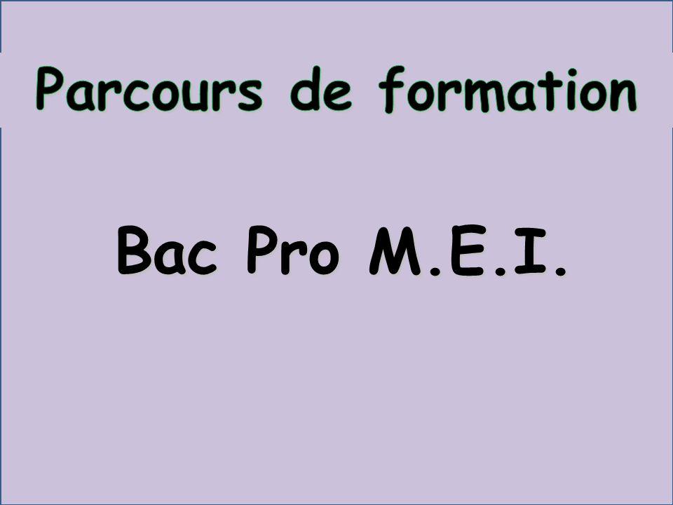 Parcours de formation Bac Pro M.E.I.