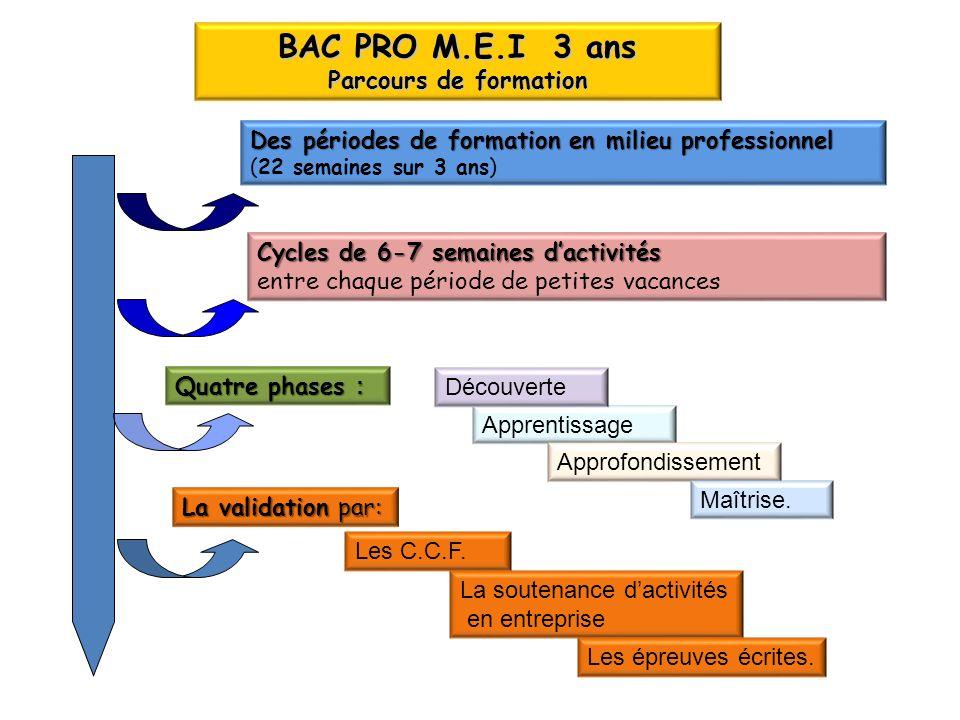 BAC PRO M.E.I 3 ans Parcours de formation