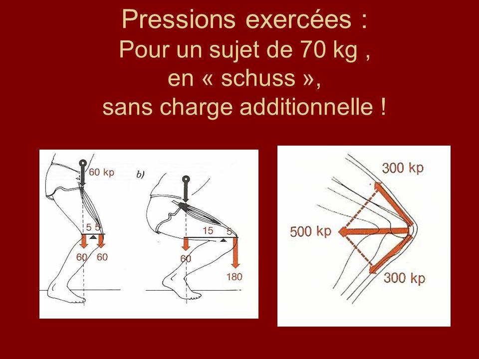 Pressions exercées : Pour un sujet de 70 kg , en « schuss », sans charge additionnelle !